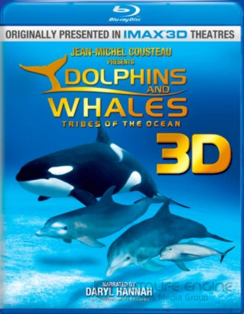 Dolphins and Whales 3D: Tribes of the Ocean 3D SBS 2008